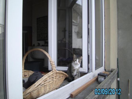 02-09-2012-pict0112.jpg