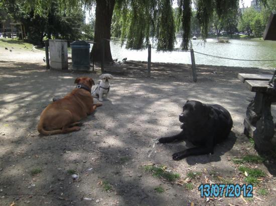 13-07-2012-pict0305-copie.jpg
