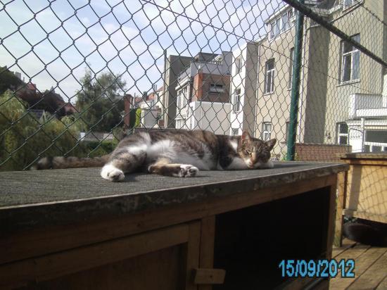 15-09-2012-pict0210-1.jpg