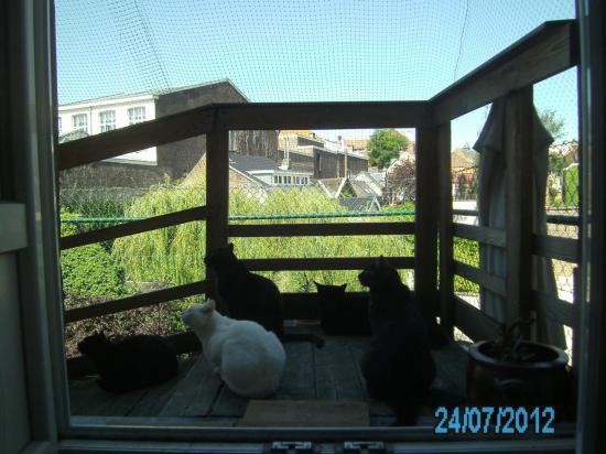 24-07-2012-pict0002.jpg